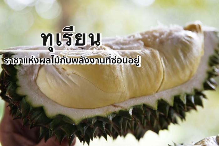 การบริโภคทุเรียนของไทย